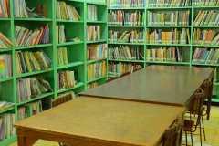 Grade-School-Library2